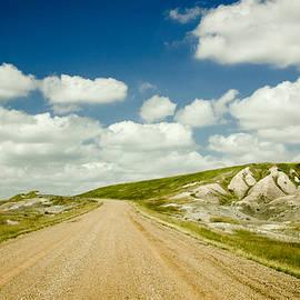 Long Road Ahead by Sandy Adams