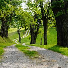 Long Road by Mike Murdock