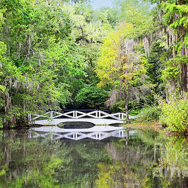 Long White Bridge Of Magnolia Plantation by Sharon McConnell