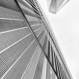 Look Up Freedom by Elvira Pinkhas