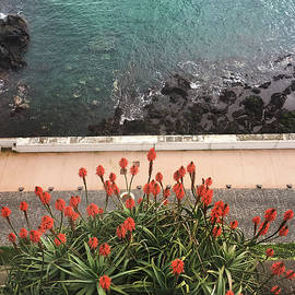 Looking Down, Angra Do Heroismo, Terceira Island Of Portugal by Kelly Hazel
