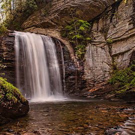 Looking Glass Falls - Pisgah National Forest by Brenda Jacobs