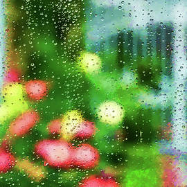 Linda Brody - Looking Through Raindrops on a  Window Artistic