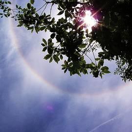 Julie Rauscher - Circle Rainbow - Looking Up