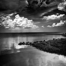 Looks Like Rain by Marvin Spates