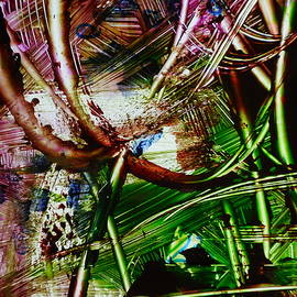 Karen Lillard - Looped