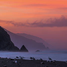 Lost Coast by Dustin LeFevre