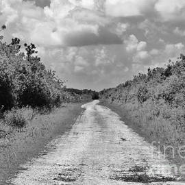 Lost Highway by Chuck Hicks