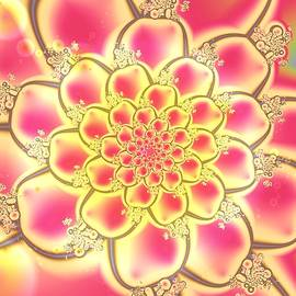 Lotus by Anastasiya Malakhova