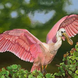 Phyllis Beiser - Louisiana Dreaming