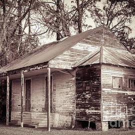 Kathleen K Parker - Louisiana House on River Road 2