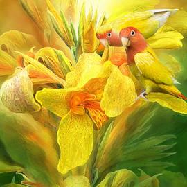 Carol Cavalaris - Love Among The Orchids