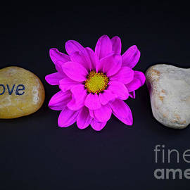 Ray Shrewsberry - Love Built On A solid Foundation