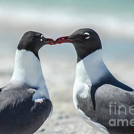 Love On The Beach by Jasmin Dominguez