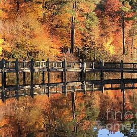 Tannis Baldwin - Lovely Autumn Day