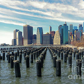 Ann Garrett - Lower Manhattan from Brooklyn Bridge Park