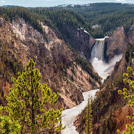 Lower Yellowstone Canyon Falls 5 - Yellowstone National Park Wyoming by Brian Harig