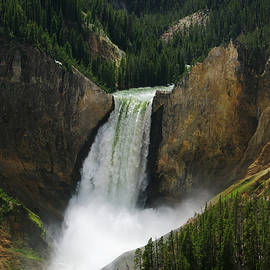 Lower Yellowstone Falls by Larry Kjorvestad
