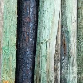Margaret Koc - Lumber Support