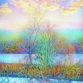 Joel Bruce Wallach - Luminous Sunrise