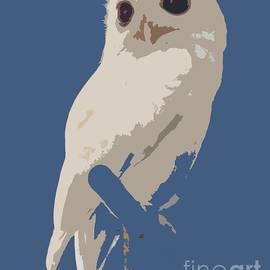Barbie Corbett-Newmin - Luna the rescued white leucistic Eastern screech owl abstracted