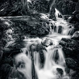 Margaret Goodwin - Lupin Falls, Strathcona Provincial Park, Black and White