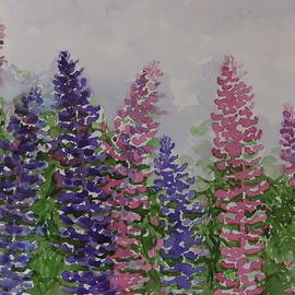 Allan Mathison - Lupines to the Sky