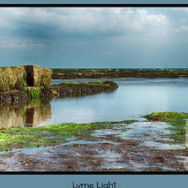 Lyme Light