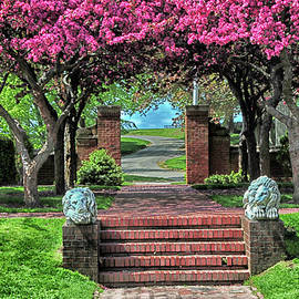 Mike Martin - Lynch Park in the Spring