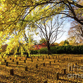 Lynchburg Old City Cemetery in Autumn by Norma Brandsberg