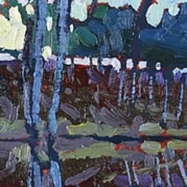 Phil Chadwick - Lyndhurst Lake Sunrise Shore