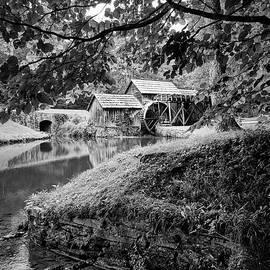 David Beebe - Mabry Mill 1