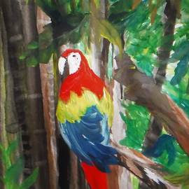 Jacqueline Whitcomb - Macaw in Watercolor