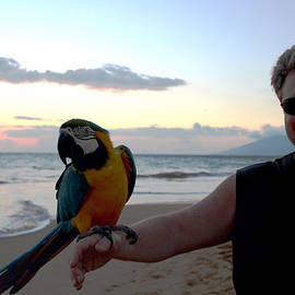 Michael Rucker - Macaw Parrot