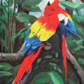 Macaws by James Jopson