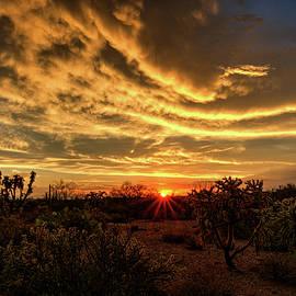 Saija Lehtonen - Magical Desert Skies at Sunset