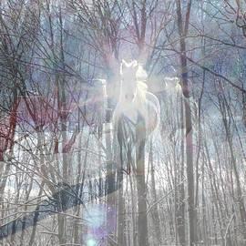 Patricia Keller - Magical Horses