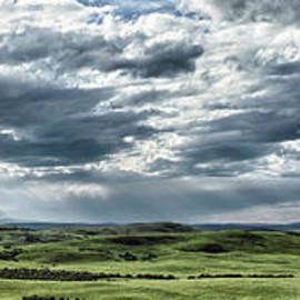 Brad Allen Fine Art - Magnetic View