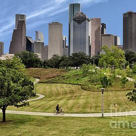 Magnificent Houston Skyline by Norman Gabitzsch