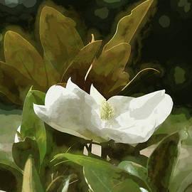 Linda Brody - Magnolia Flower Abstract I