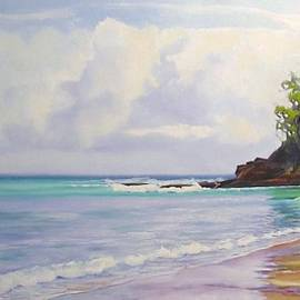 Chris Hobel - Main beach Noosa heads Queensland Australia