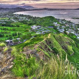 Reid Callaway - Majestic Climber Kailua Beach Pill Box Oahu Hawaii Art