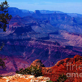 Majestic Grand Canyon by Susanne Van Hulst