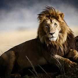Mike Gaudaur - majestic male on mound