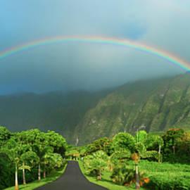 Sean Davey - Majestic Rainbow