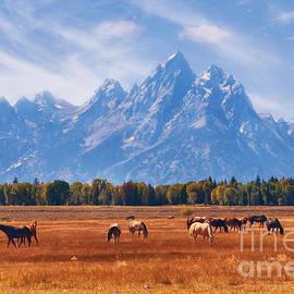Carolyn Rauh - Majestic Teton Landscape