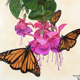 Martin Wilneff - Majesty Monarch Butterflies