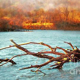 Debbie Nobile - Mallard Lake Beauty