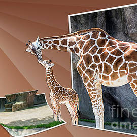 Mama and Baby Maya by Deborah Klubertanz