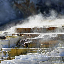 Jeff Brunton - Mammoth Springs, Upper Terrace 41